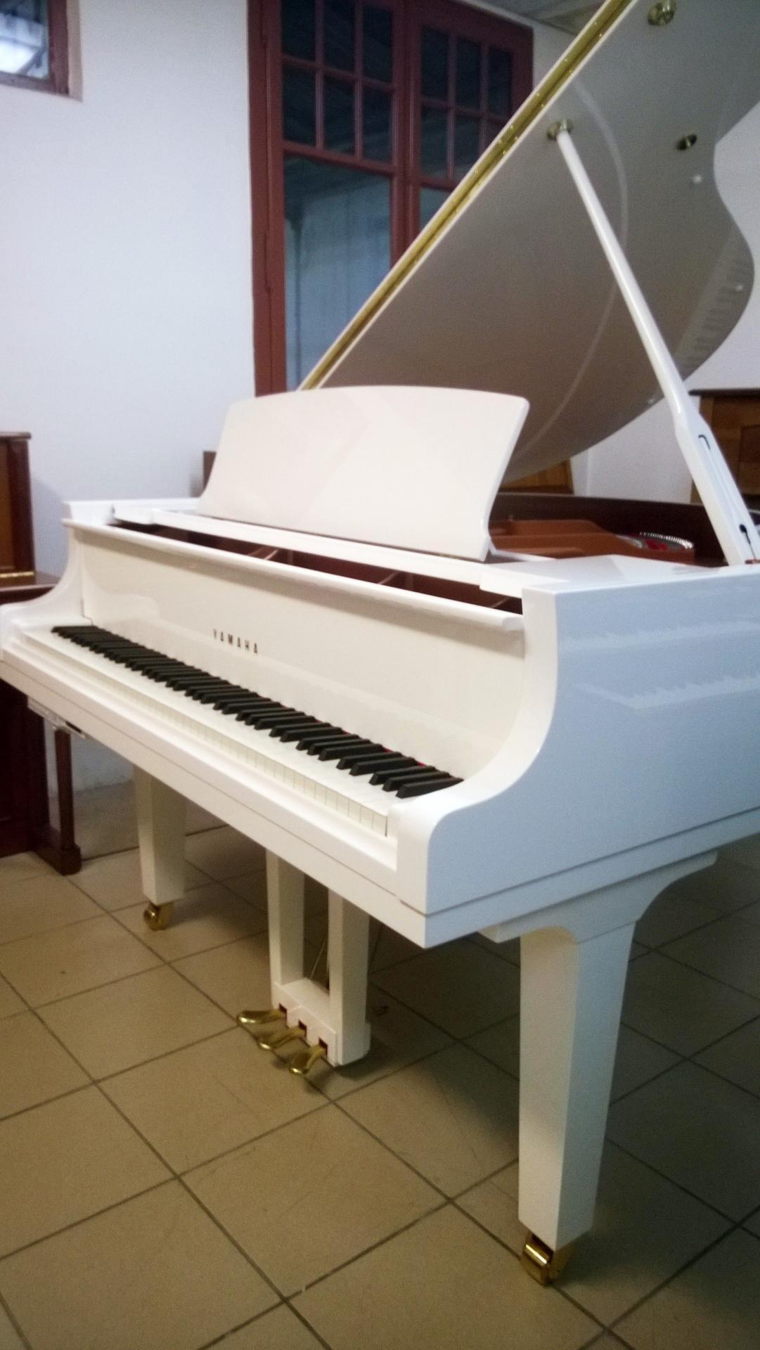 Qui peut prendre des cours de piano en ligne?